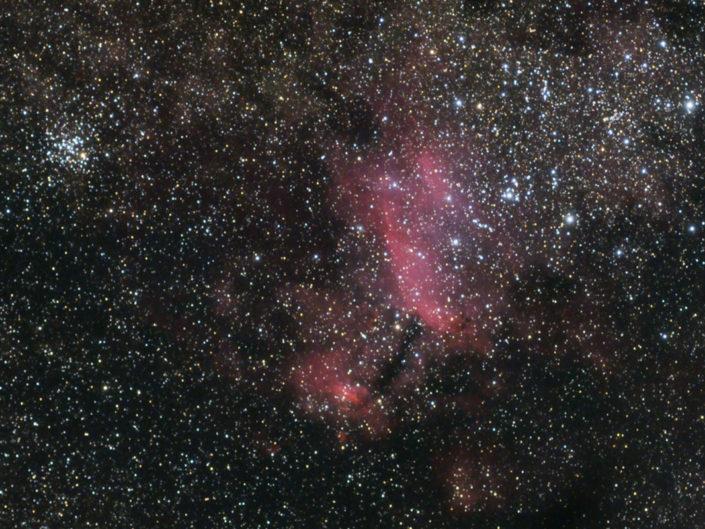 IC 4628 - Prawn Nebula (Garnelennebel), Namibia, Tivoli, 2008