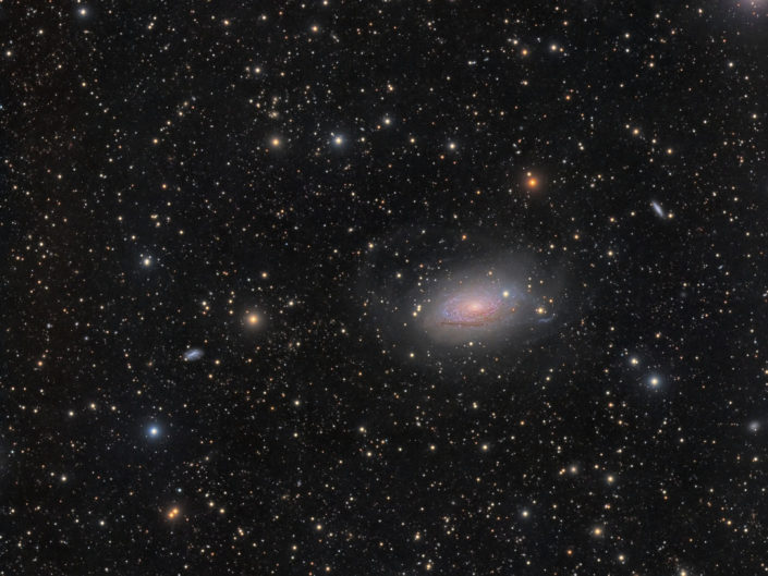 Messier 63 - Sun Flower Galaxy (Sonnenblumengalaxie), (DSW), New Mexico, 2018