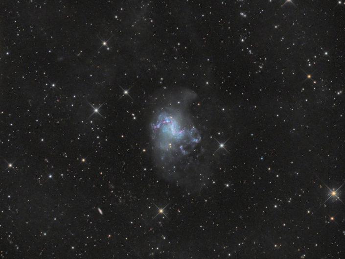 NGC 1313, Namibia, Tivoli, 2013