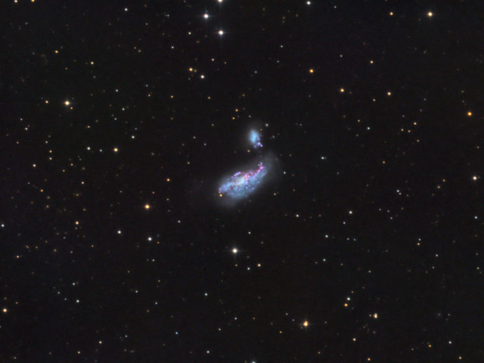 NGC 4485 and 4490, Krefeld, 2016