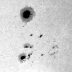 Sunspots, Düsseldorf, 1981-02-14
