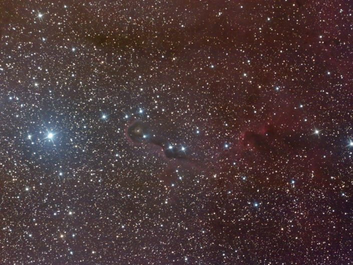 IC 1396A - Elephant's Trunk nebula (Elefantenrüsselnebel), France, Banon, 2010